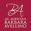 03 - Logo AVELLINO